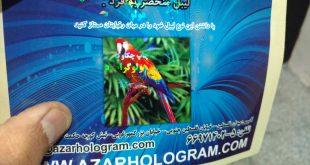 image 310x165 - لیبلهای هولوگرافیک (جدید)